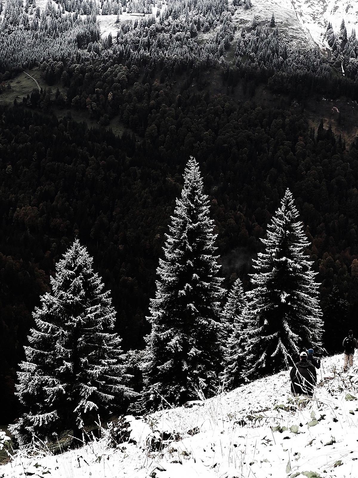 erster Schnee im Allgäu